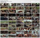 Calmos / Femmes Fatales (1976)