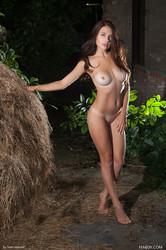 Niemira – At The Farm