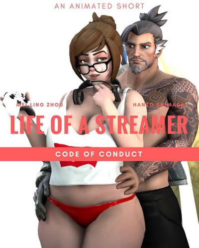 Life of Streamer